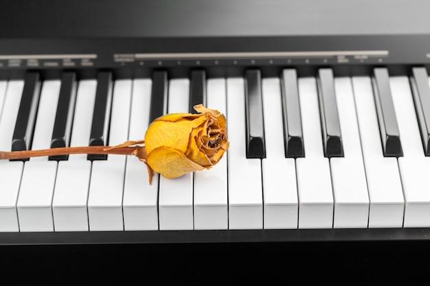 Getrocknete rose auf einem klavier