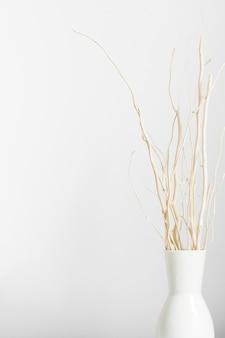 Getrocknete stämme im vase auf weißem hintergrund