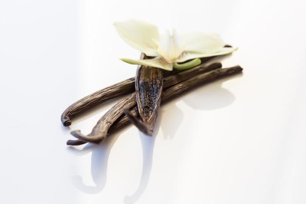 Getrocknete vanilleschoten und vanilleorchidee auf holztisch