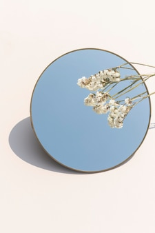 Getrocknete weiße statice-blume über einem runden spiegel