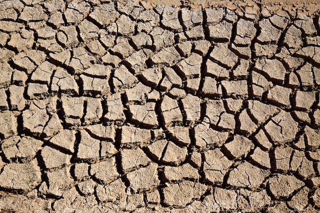 Getrockneter bewässerungsgraben-lehmboden in albufera-feldern