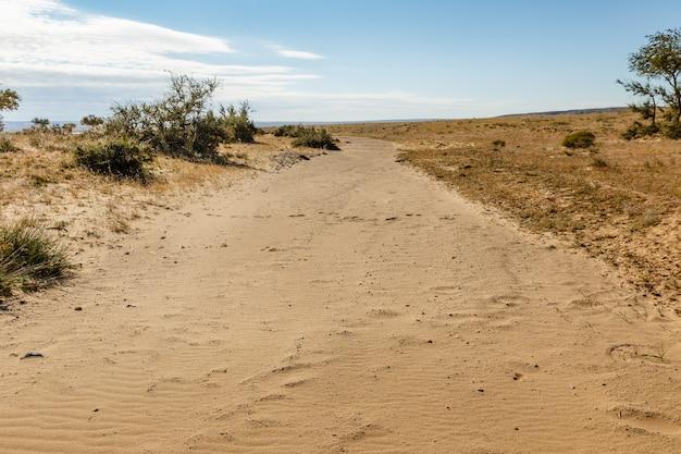 Getrockneter fluss in der wüste, gobi-wüste, mongolei