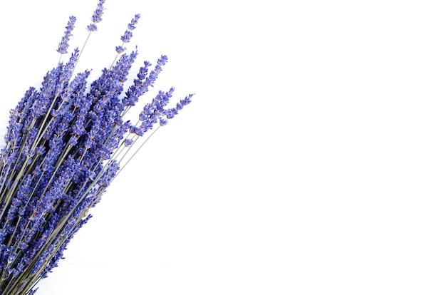 Getrockneter lavendelblumenstrauß auf einem weißen hintergrund. platz kopieren
