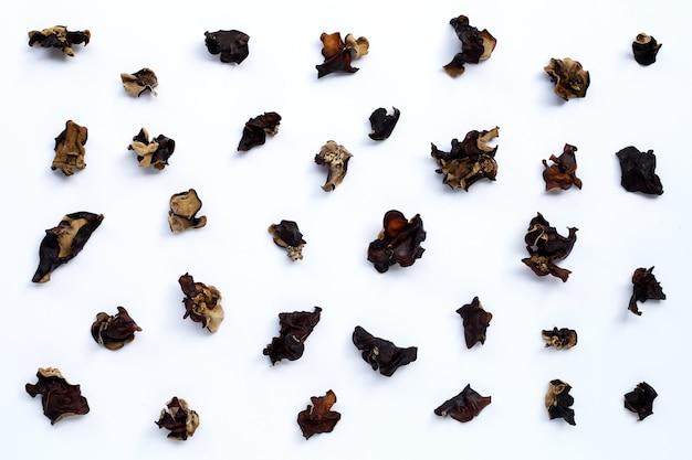 Getrockneter schwarzer pilz. draufsicht