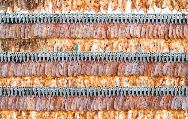 Getrockneter tintenfisch am stiel