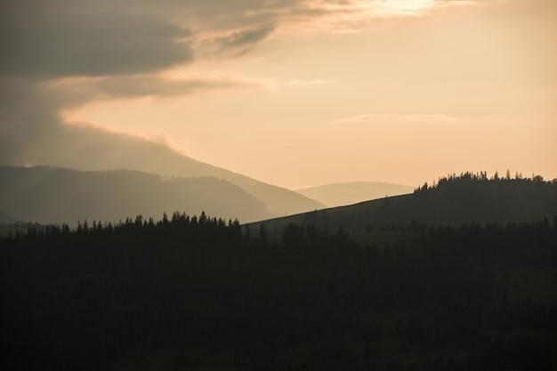 Gewitterwolken über den bergen und dem wald während des sonnenuntergangs.