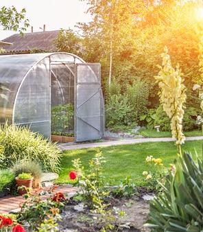Gewölbtes kleines gewächshaus auf privatem hinterhof mit sonneneruption