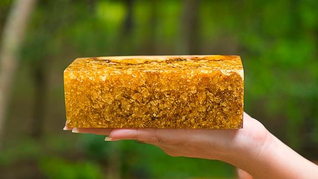 Gießen epoxidharz wurzelholz grüner hintergrund