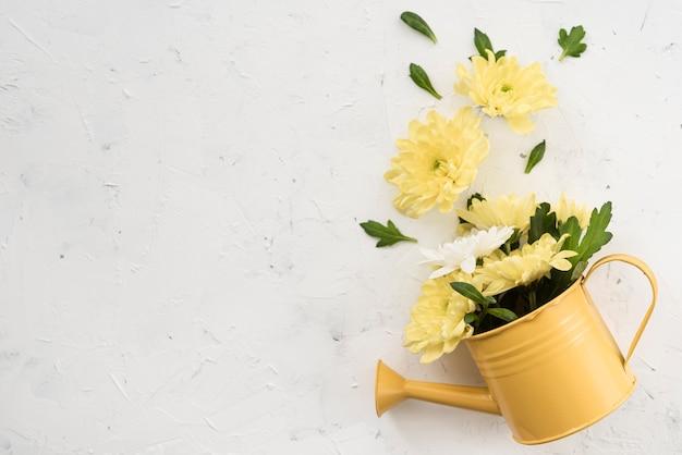 Gießkanne und gelbe frühlingsblumen