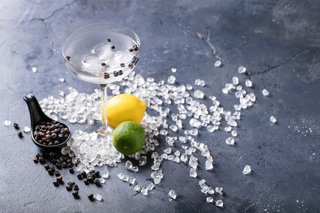 Gin und tonic drink