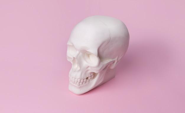 Gipsschädel auf pastellrosa tisch.