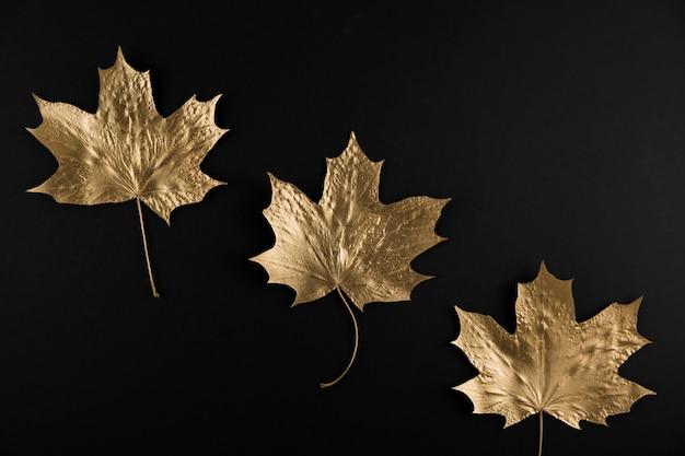 Glänzendes goldenes ahornblatt auf schwarzem hintergrund