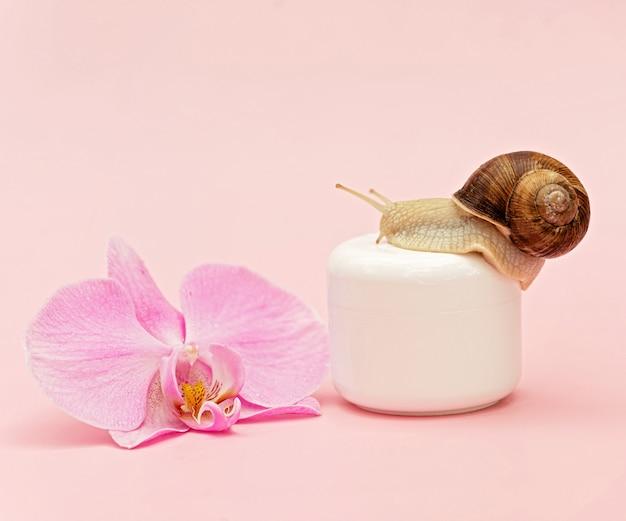 Glas mit kosmetischer creme zur hautverjüngung auf rosafarbenem hintergrund mit schnecken- und orchideenblüte, schneckenschleimcreme, hautfeuchtigkeit, schönheit, gesundheit, spa-konzept. weicher selektiver fokus, kopienraum.
