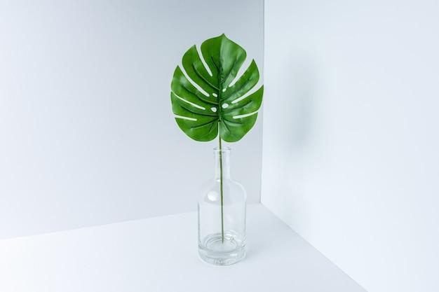 Glasflasche mit tropischem grünem monstera-palmblatt