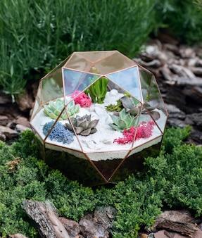 Glasflorarium mit sukkulenten im garten