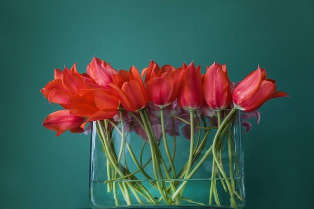Glasvase mit schönen tulpen auf farbe