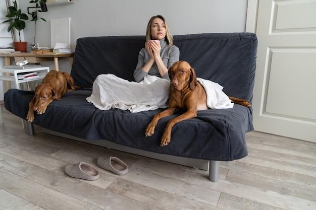 Gleichgültige frau kämpft mit bipolarer depression und psychischer störung, bleibt mit zwei hunden zu hause