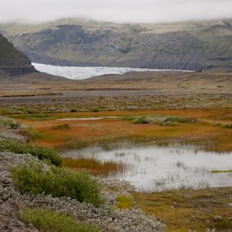 Gletscher durch gebirgstal, feuchtgebiete im vordergrund