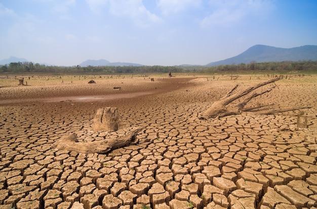 Globale erwärmung, dürre.