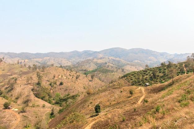 Globale erwärmung und entwaldung, waldbrände, dürren, der wechsel der dunstsaison