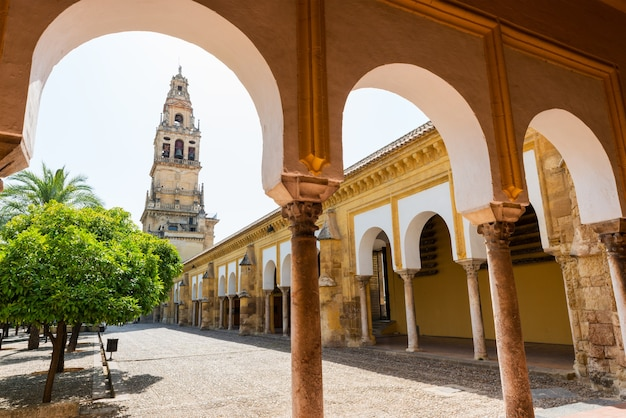 Glockenturm und gärten der moscheekathedrale in cordoba