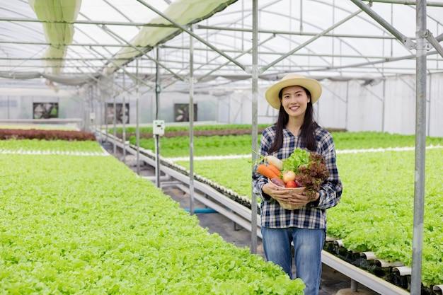 Glücklich von asiatischem landwirt, der einen korb des bio-gemüses nach der ernte in der hydrokulturfarm mit lächeln hält.