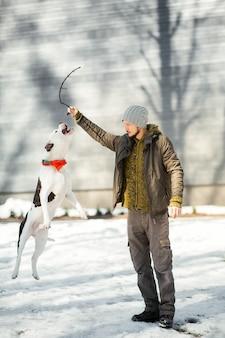Glückliche amerikanische bulldogge springt zu einem mann, der im winterpark spielt
