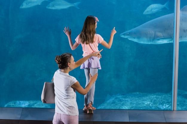 Glückliche familie, die aquarium betrachtet