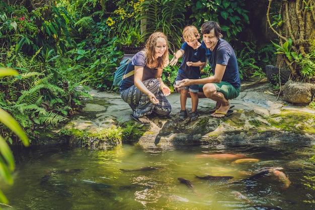 Glückliche familie, die bunten wels im tropischen teich füttert