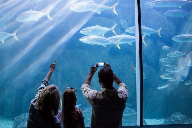 Glückliche familie, die das aquarium betrachtet