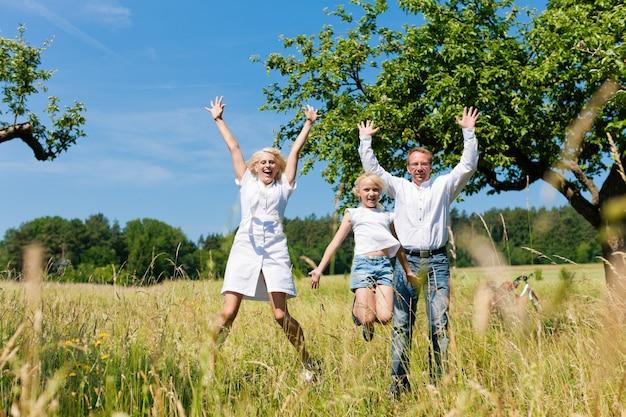 Glückliche familie, die in einer sommerwiese zujubelt