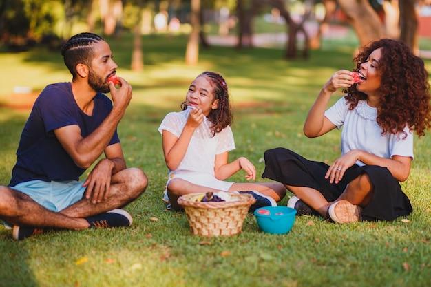 Glückliche familie, die picknick im park macht
