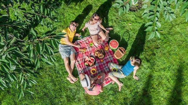 Glückliche familie mit den kindern, die picknick im park haben