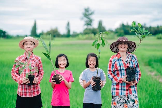 Glückliche familienmenschen, die aussaat eines baumes zum pflanzen im garten auf organischem grünem reisfeld halten
