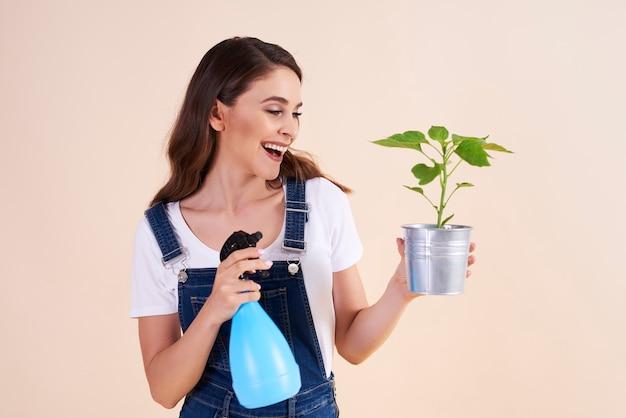 Glückliche frau, die die pflanzen mit insektizidspray besprüht
