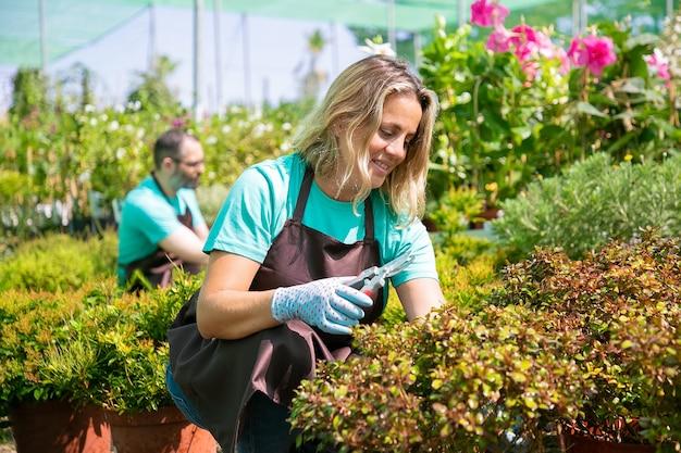 Glückliche frau, die im garten arbeitet, pflanzen in töpfen wächst, zweige mit gartenschere schneidet. gartenberufskonzept