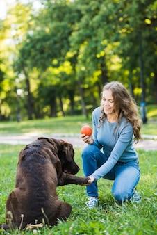 Glückliche frau mit dem ball, der die tatze ihres hundes im park rüttelt
