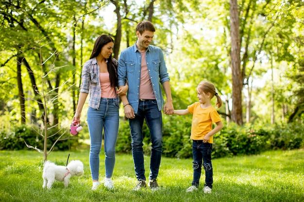 Glückliche junge familie mit niedlichem bichonhund im park