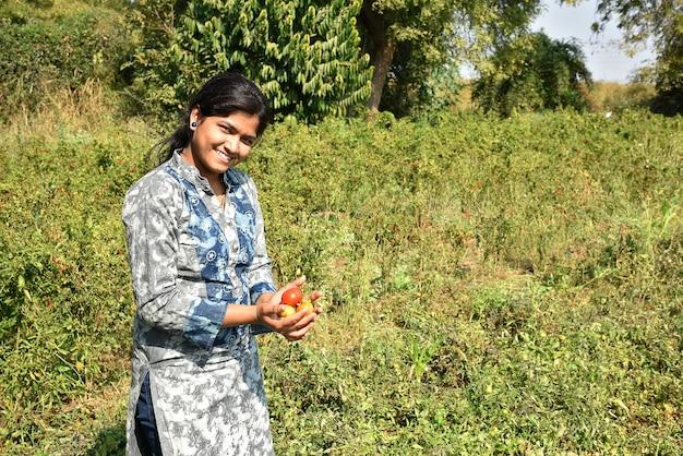 Glückliche junge frau, die frische tomaten in bio-bauernhof oder feld pflückt oder untersucht