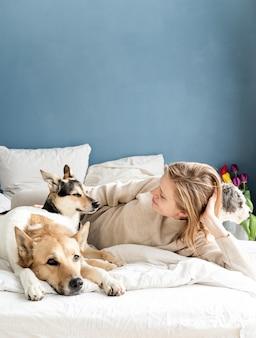 Glückliche junge frau, die im bett mit ihren hunden, blauer wandhintergrund liegt