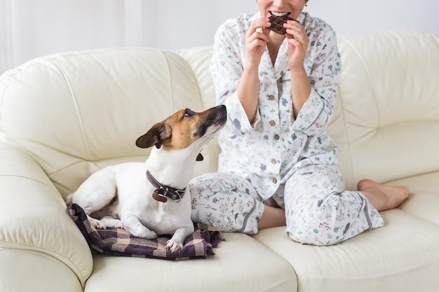 Glückliche junge frau mit pyjama mit schönem hund im wohnzimmer mit weihnachtsbaum. urlaub konzept.