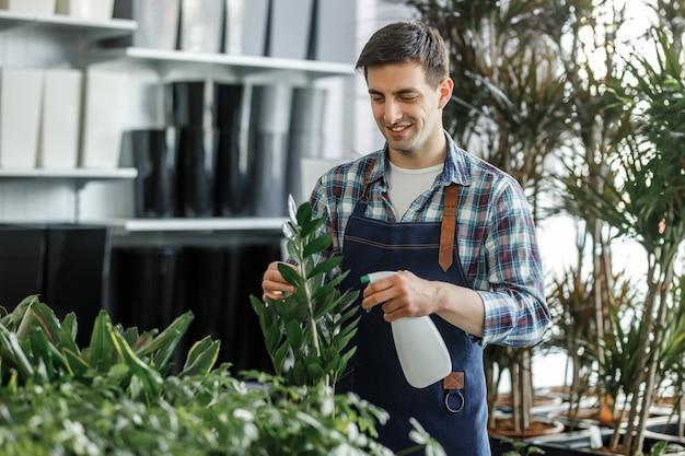 Glückliche junge männliche bewässerung der heimischen pflanzenblätter indoor