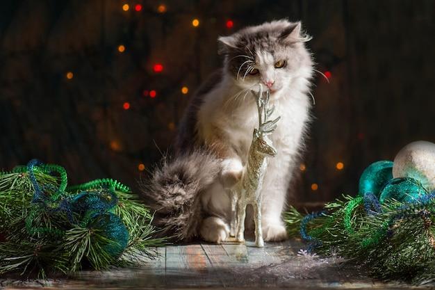 Glückliche katze spielt mit einem weihnachtsspielzeug. neugieriges kätzchen, das im lametta und in den weihnachtsdekorationen sitzt. kitty spielt mit weihnachtsspielzeug.