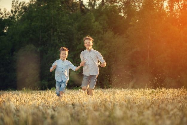 Glückliche kinder, die um das feld mit dandalions onsummer sonnenuntergang laufen.