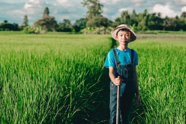 Glückliche kinder lächeln und spielen auf bio-reis fied