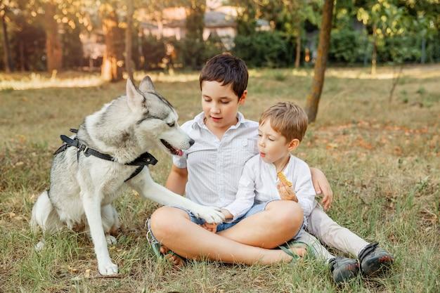 Glückliche kleine jungen, die spaß mit haustier draußen genießen zusammen genießen