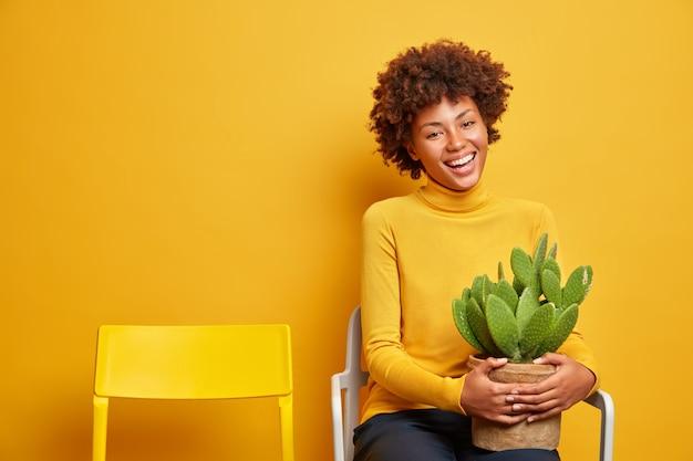 Glückliche lockige frau entspannt sich gerade auf stuhl hält topf mit schönen grünen kaktus allein mit ihren gedanken in lässigen rollkragenpullover gekleidet