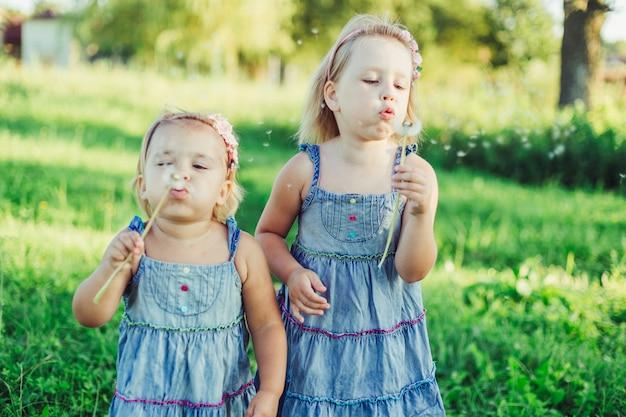 Glückliche niedliche kinderschwesterschaft, die spaß draußen bläst löwenzahn zusammen. kindheit, natur, urlaub, kinderlebensstilkonzept