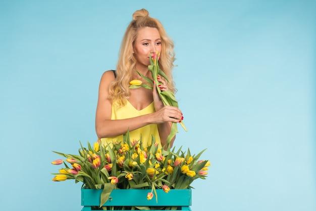 Glückliche schöne blonde kaukasische frau mit großer schachtel tulpen auf blauer oberfläche.