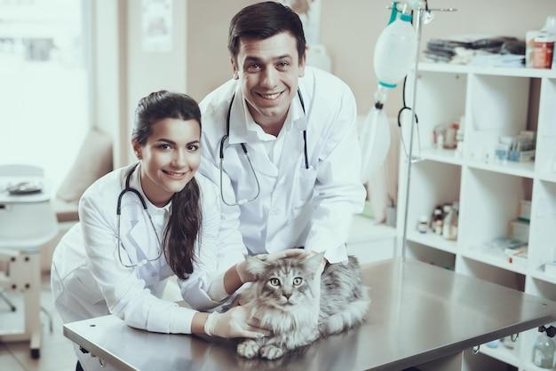 Glückliche tierärzte überprüfen erschrockene katze in der klinik